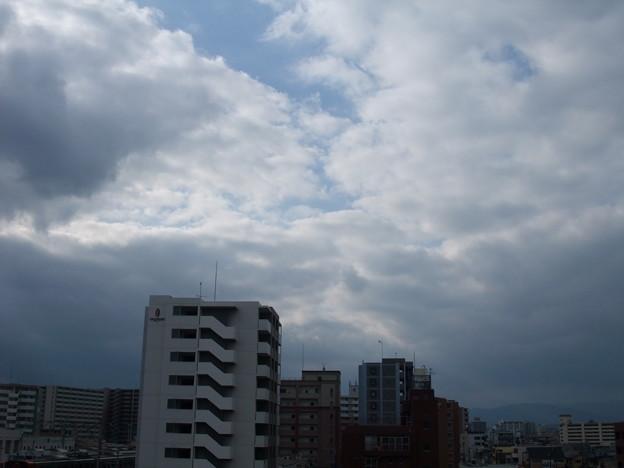 2009_1115