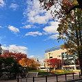 写真: 市内 SLがある公園で ★