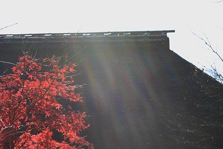 2009.12.06 長屋門公園 紅葉