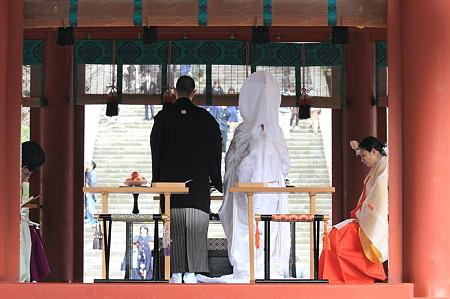 2010.03.05 鎌倉 八幡宮 誓詞奏上