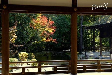 上賀茂神社にて・・5