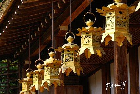 上賀茂神社にて・・10