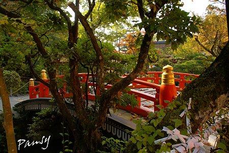 上賀茂神社にて・・11
