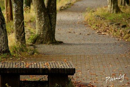 公園にて・・2