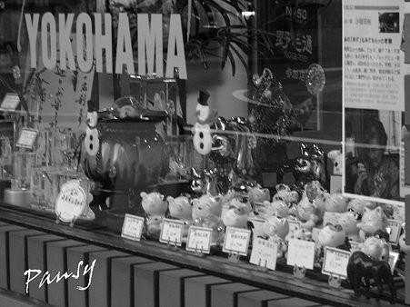 横浜野毛さんぽ~7