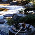 Photos: ツララのある冬の枯山水!(100206)