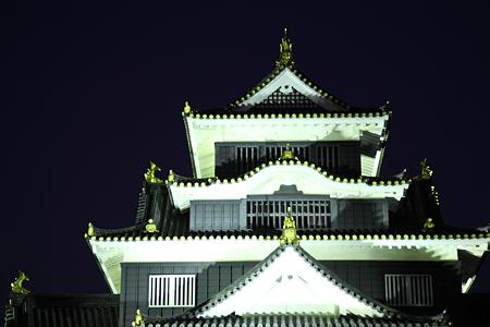 岡山城ライトアップ - 1