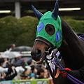 Photos: Tosen Crown