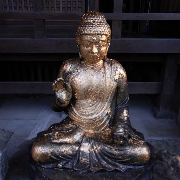 【東京 神社仏閣】 大円寺 (90)