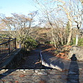 写真: 091206-11高尾山~陣馬山縦走・城山方面への道