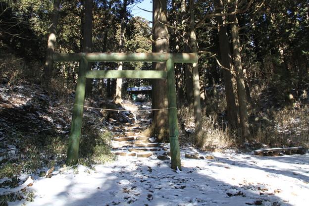 写真: 100116-28大岳山・馬頭刈尾根 大岳神社