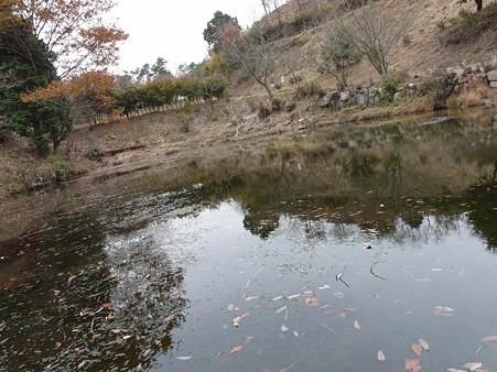 2009-12-13 TAMADA 059