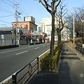 Photos: さくら通り - 桑野 - 3