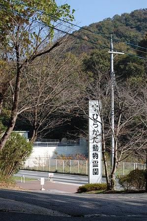 2009_11060027