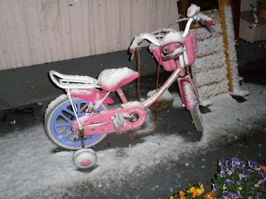 ベランダにも雪が積もりだしました