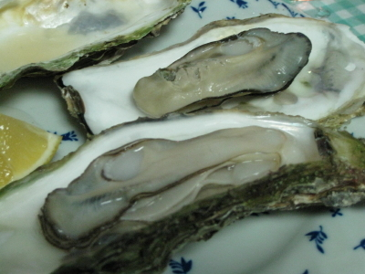 加熱用殻付牡蠣は特価品