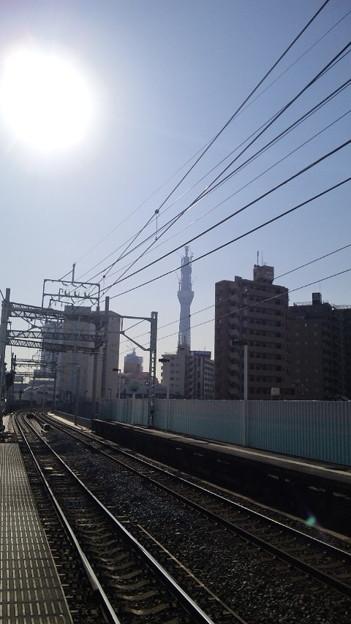 東向島駅よりスカツ