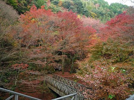 山中渓谷の紅葉