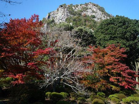御船山楽園の紅葉(16)