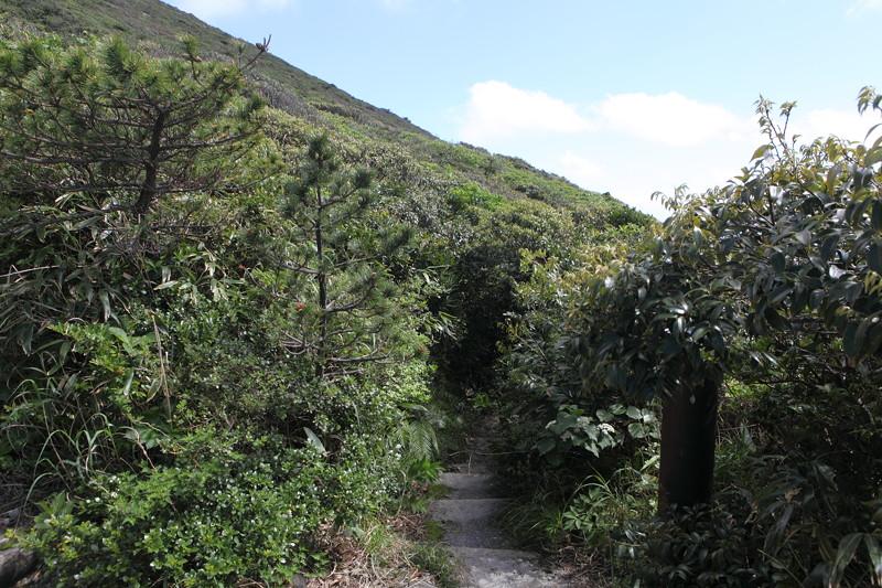 IMG_6732神津島__天上山登山と島巡り