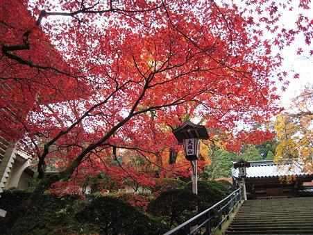 最乗寺(2008年)