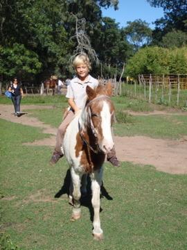 乗馬に挑戦2