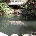 写真: 清水の池