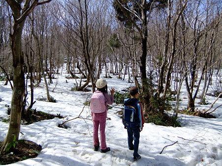 雪の中を歩く2人