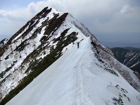 ギボシから権現岳に向うミノさん