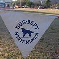 写真: DOG DEPT SANTAMONICA?