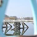 Photos: <木橋・彼方に白鳥>